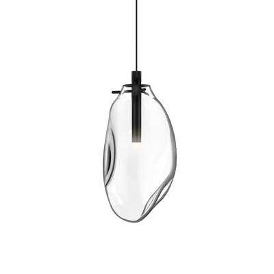 Tierra 1-Light Mini Pendant Shade Finish: Clear, Size: 22