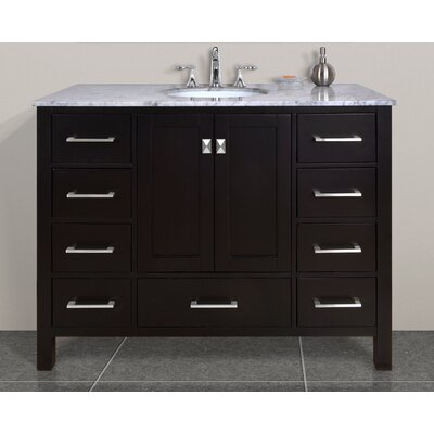 Ankney 48 Single Bathroom Vanity Set Base Finish: Espresso