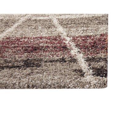 Teasley Beige/Brown Area Rug Rug Size: 53 x 76