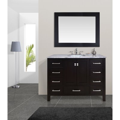 Ankney 48 Single Bathroom Vanity Set with Mirror Base Finish: Espresso