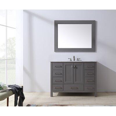 Ankney 48 Single Bathroom Vanity Set with Mirror Base Finish: Gray