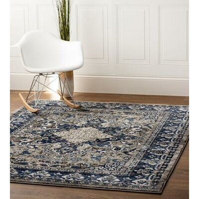 Rosie Traditional Distressed Gray/Blue Area Rug