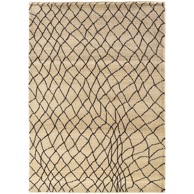 Feltner Ivory/Brown Area Rug Rug Size: Rectangle 53 x 76