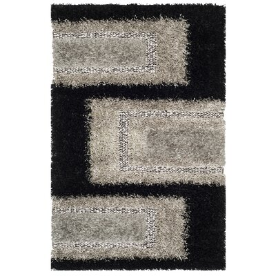 Sinope Black/Grey Rug Rug Size: Rectangle 4 x 6