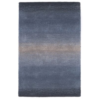Belding Hand-Tufted Wool Blue Area Rug Rug Size: Rectangle 2 x 3