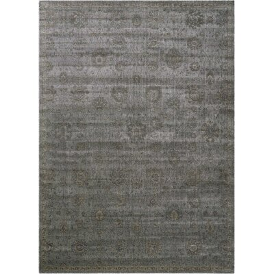 Diona Graphite Area Rug Rug Size: Rectangle 7'6
