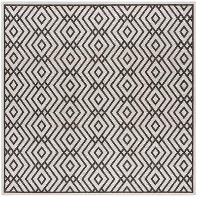 Kallias Contemporary Light Gray Area Rug Rug Size: Square 67