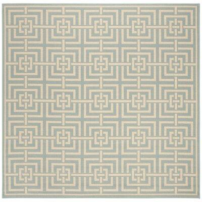 Shea Aqua/Cream Area Rug Rug Size: Square 67