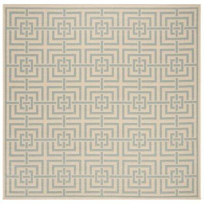 Shea Cream/Aqua Area Rug Rug Size: Square 67