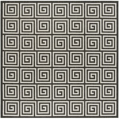 Kallias Light Gray Area Rug Rug Size: Square 67