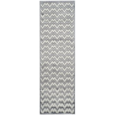 Navarro Light Gray/Dark Gray Area Rug Rug Size: Runner 2'3