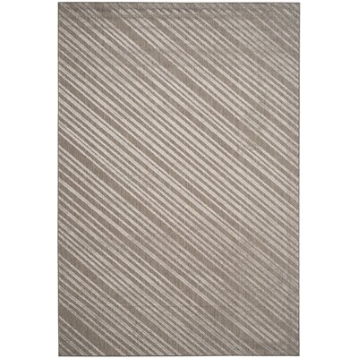 Shaun Cement Indoor/Outdoor Area Rug Rug Size: 67 x 96