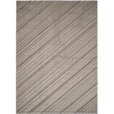 Shaun Cement Indoor/Outdoor Area Rug Rug Size: Rectangle 8 x 112