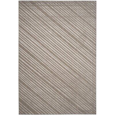 Shaun Cement Indoor/Outdoor Area Rug Rug Size: 53 x 77