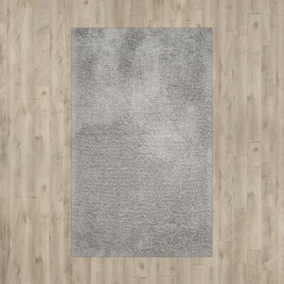 Page Silver Shag Area Rug Rug Size: 5 x 8