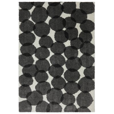 Jose Black Memphis Area Rug Rug Size: Rectangle 5 x 7