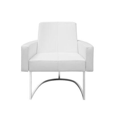 Antone Leisure Armchair Upholstery: White