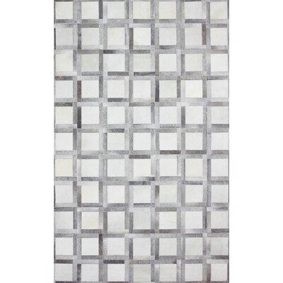 Davi Handmade Gray Area Rug Rug Size: 8 x 10