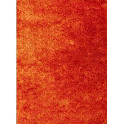 Andre Sunset Orange Indoor/Outdoor Area Rug Rug Size: 76 x 96