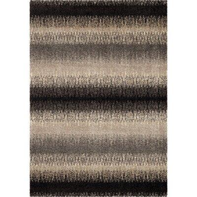 Rasheed Area Rug Rug Size: 53 x 76