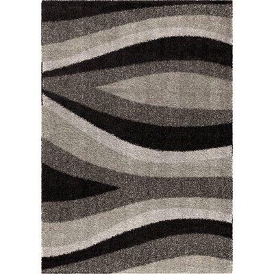 Fred Shag Black Area Rug Rug Size: 53 x 76