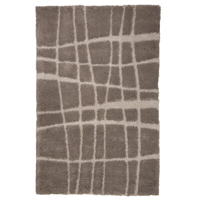 Danil Hand-Woven Brown Area Rug Rug Size: 8' x 10'