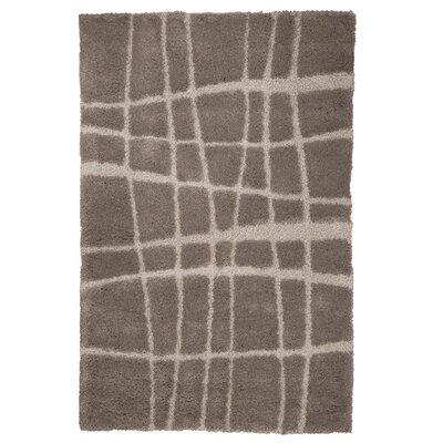 Danil Hand-Woven Brown Area Rug Rug Size: 5 x 77