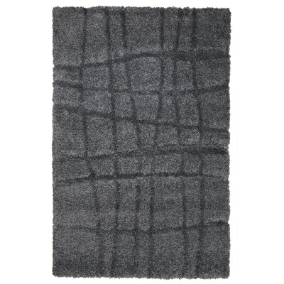 Danil Dark Grey Area Rug Rug Size: 5 x 77