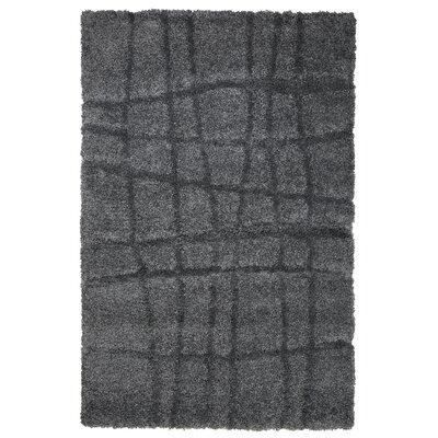 Danil Dark Grey Area Rug Rug Size: 4 x 6