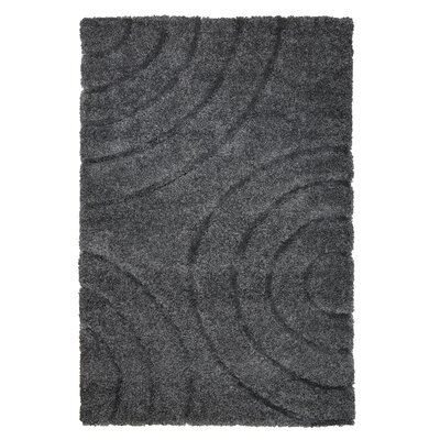 Danil Dark Grey Area Rug Rug Size: 33 x 5