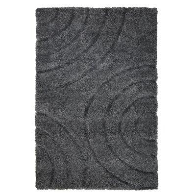 Danil Dark Grey Area Rug Rug Size: 8 x 10