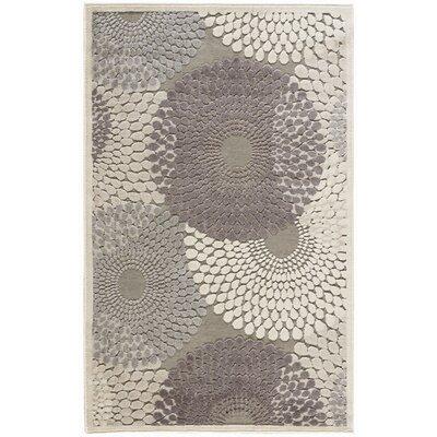 Asa Grey Area Rug Rug Size: 36 x 56