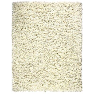 Shag Cream Area Rug Rug Size: 5 x 8