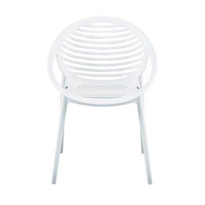 Cristiano Arm Chair (Set of 4) Finish: White