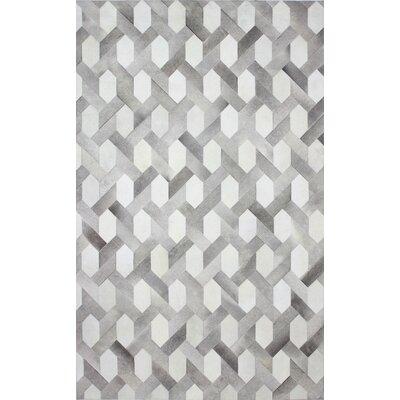 Davi Flat Woven Grey Area Rug Rug Size: 9 x 12