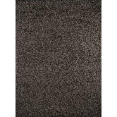 Fabian Dark Gray Area Rug Rug Size: 17 x 27