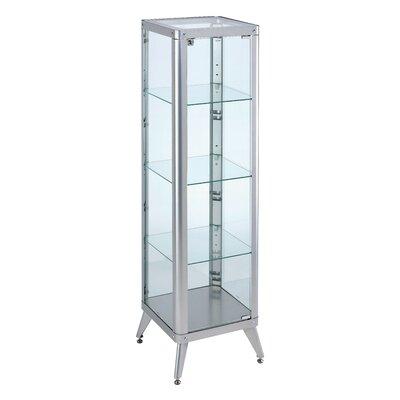 Ahmad Standard Curio Cabinet Finish: Silver