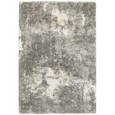 Leonard Gray/Ivory Area Rug Size: 67 x 96