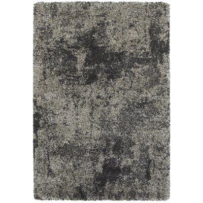 Leonard Gray/Charcoal Area Rug Size: Rectangle 310 x 55