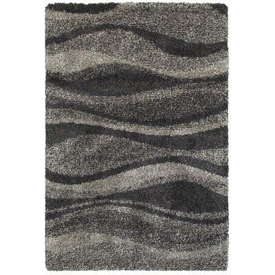 Leonard Gray/Charcoal Area Rug Size: 67 x 96
