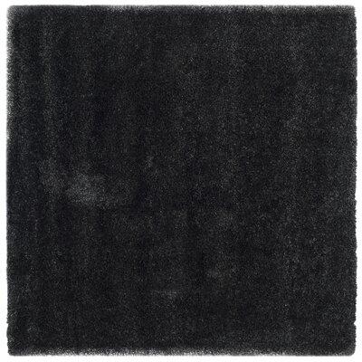 Rowen Black Area Rug Rug Size: Square 67