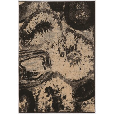 Wolfsburg Brown/Black Area Rug Rug Size: Rectangle 5 x 76