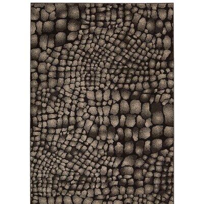 Cherelle Black Area Rug Rug Size: 39 x 59