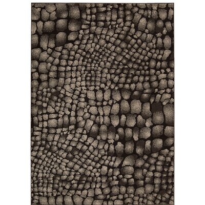 Cherelle Black Area Rug Rug Size: Rectangle 53 x 76