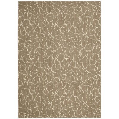 Chianna Fawn Area Rug Rug Size: Rectangle 36 x 56