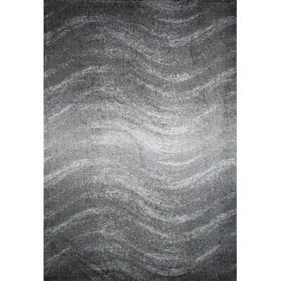 Bilboa Gray Area Rug Rug Size: 2 x 3