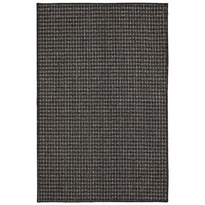 Steuben Black Area Rug Rug Size: Rectangle 2'6