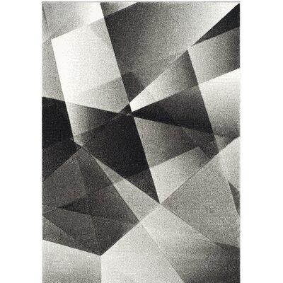 Craigwood Gray/Black Area Rug Rug Size: Rectangle 53 x 76