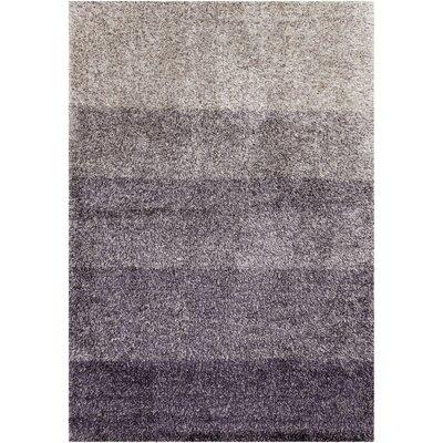 Metzler Gray/Ivory Area Rug Rug Size: 5 x 76