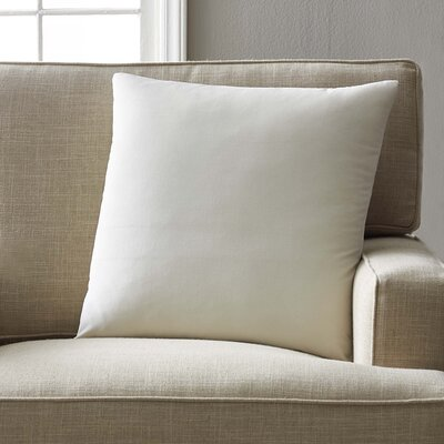 Kiara Velvet Pillow Cover Color: Cloud, Size: 20 H x 20 W x 5 D